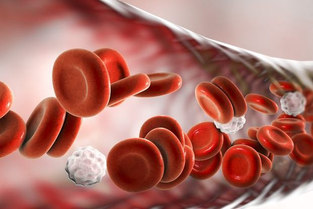 Different Types of Disorders That Can Affect Blood Cells