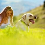 Wellness Advantages Of Getting A Pet health and wellness
