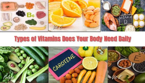 What Types of Vitamins Does Your Body Need Daily to Perform at The Best Level?